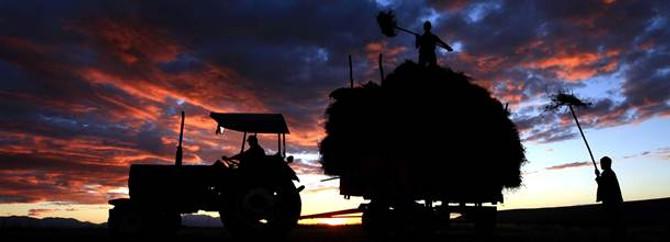 Traktörü deviren çocuk hayatını kaybetti
