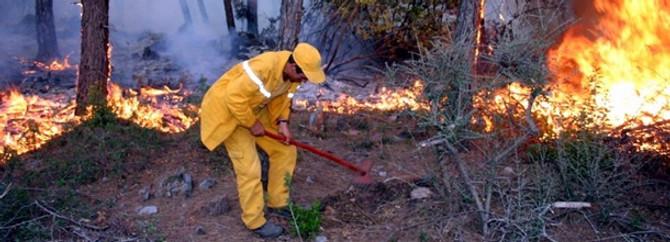 Afyonkarahisar'da arazi yangını