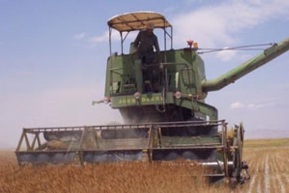 Körfez'den tarıma 3 milyar $ yatırım