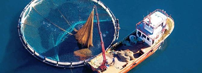 """""""Sürdürülebilir avcılık yolları aranmalı"""""""