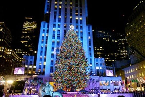 "New York'ta ""ağaç"" turizmi"