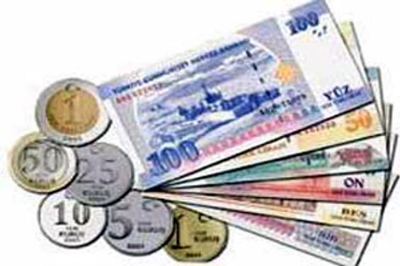 Lira, TÜFE ve ÜFE bazında değer kazandı