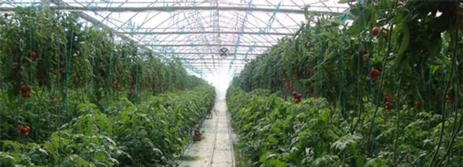 Tarım sektörü Eskişehir'de buluşacak