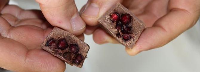 Dünyanın ilk 'çikolata vadisi' Ordu'da kuruluyor