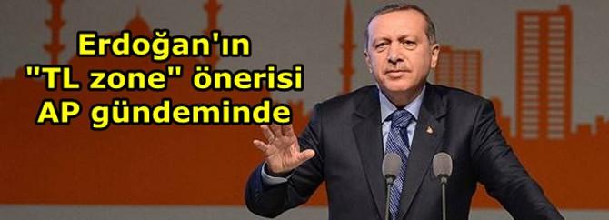 """Erdoğan'ın """"TL zone"""" önerisi AP gündeminde"""