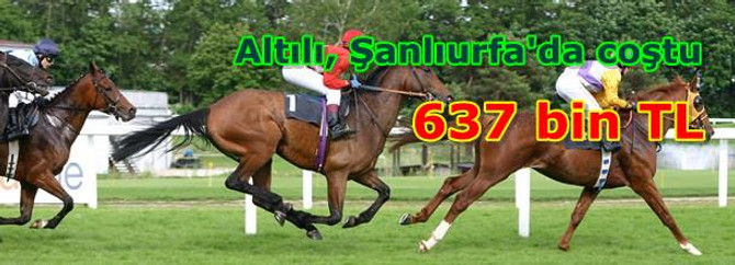 Şanlıurfa altılısı 636.972 TL verdi