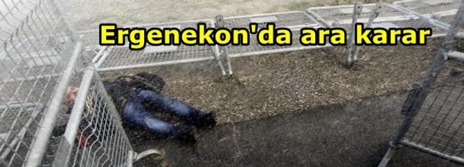 Ergenekon'da ara karar