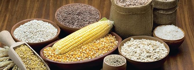 Tahılda yüzde 30'luk rekolte artışı bekleniyor