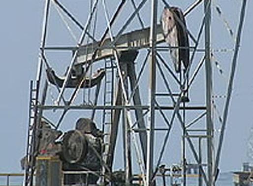 Güney Koreli şirketler Özbekistan'da petrol ve gaz arayacak