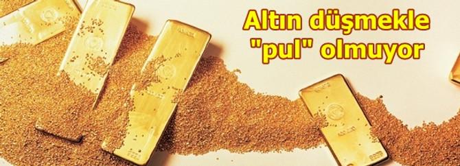 """Altın düşmekle """"pul"""" olmuyor"""