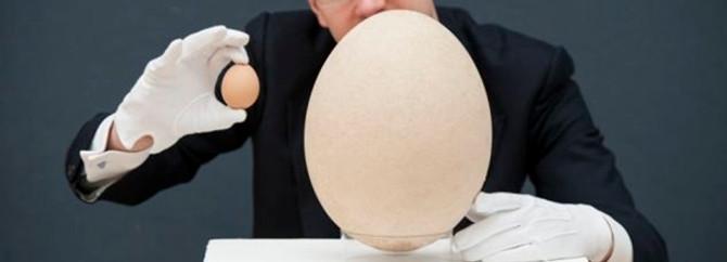 Devasa yumurta 102 bin dolara satıldı