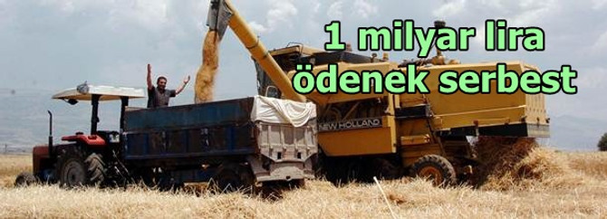 1 milyar lira ödenek serbest bırakıldı