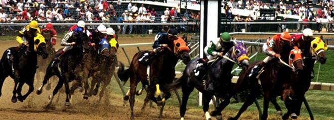 Türkiye'nin at yetiştiricisi Eskişehir, yarışlara da talip