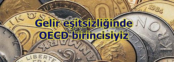 Türkiye gelir eşitsizliğinde OECD birincisi