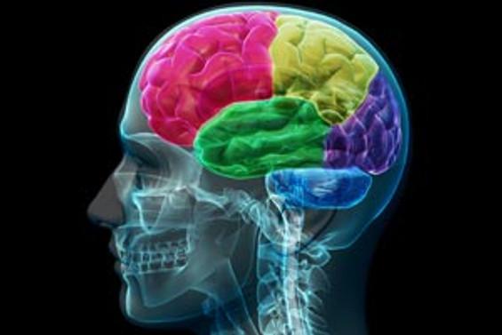 """Dünyanın """"en zeki"""" beyinleri yarışacak"""