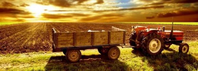 Tarımsal işletmelere  375 lira  destek