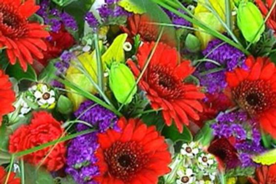 Türkiye'nin en büyük çiçek borsası açıldı