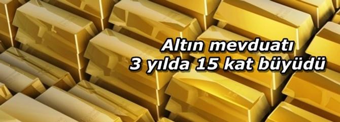 Altın mevduatı 3 yılda 15 kat büyüdü