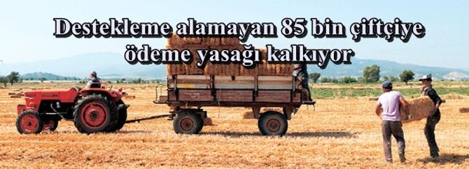 Destekleme alamayan 85 bin çiftçiye ödeme yasağı kalkıyor