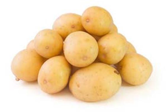 Patates kabuğundan biyogaz üretilecek