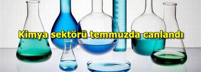 Kimya sektörü temmuzda canlandı