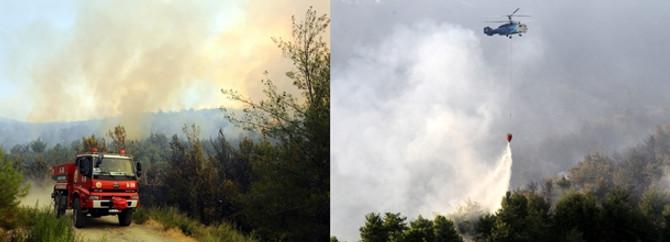 700 hektarlık alan zarar gördü