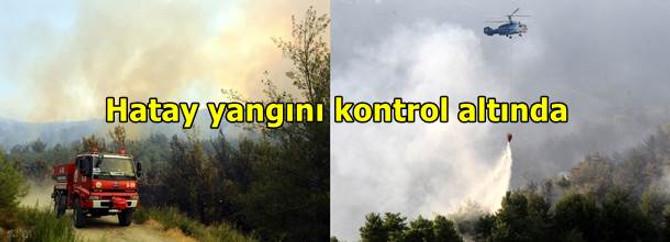 Hatay yangını kontrol altında