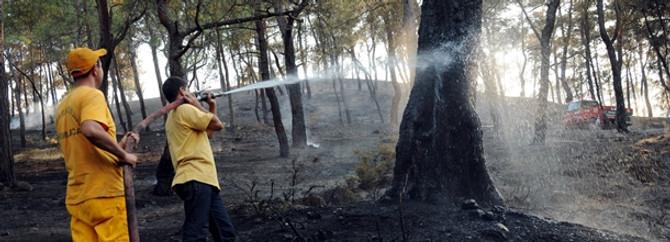 Kumluca'da orman yangını başladı
