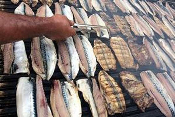Haftada bir kez balık yemek hastalıklardan koruyor