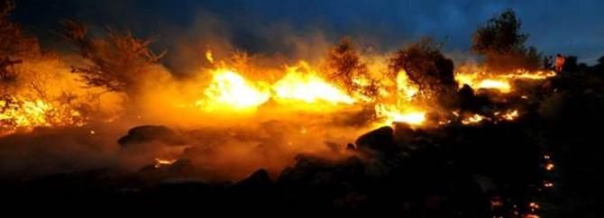 Muğla'daki yangınlar kontrol altına alınamıyor