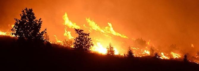 Rodos'ta 42 bin dönümden fazla arazi yandı