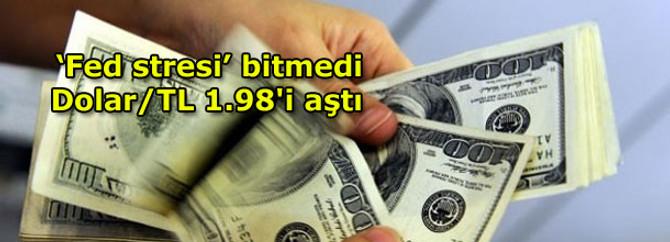 Dolar/TL 1.98'e dayandı