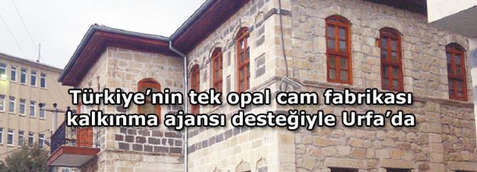 Türkiye'nin tek opal cam fabrikası kalkınma ajansı desteğiyle Urfa'da