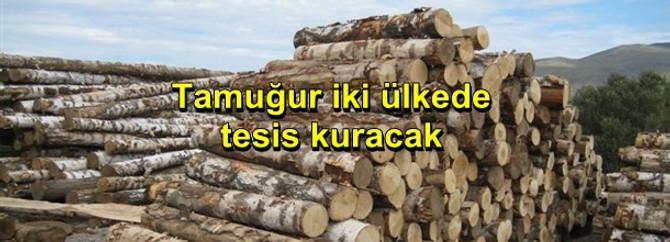 Tamuğur, Bulgaristan ve Romanya'da tesis kuracak