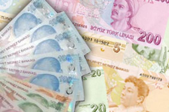 Türk Lirası şubatta değer kazandı