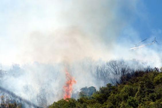 Kırklareli'de orman yangını