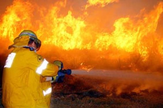 Şeker Piliç'in fabrikasında yangın çıktı