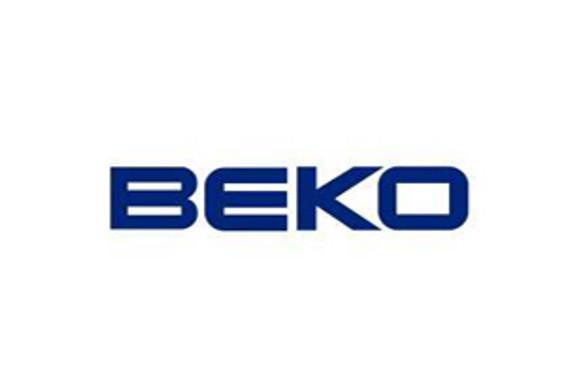BEKO LLC 'yılın şirketi' seçildi