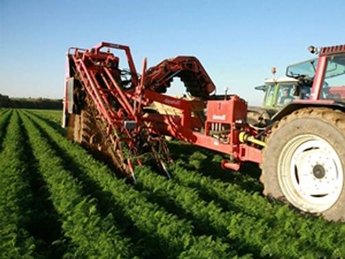Türkiye'nin tarımsal bilgi sistemi oluşturulacak