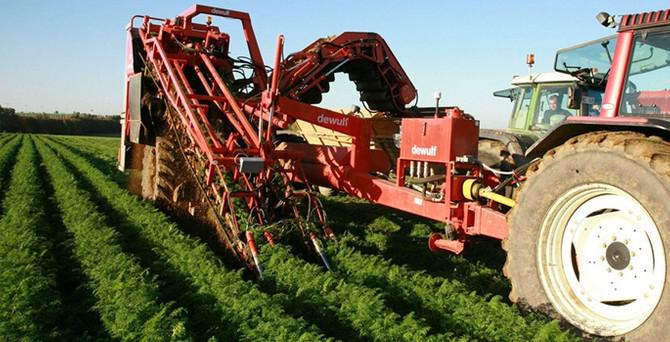 Rusya'daki kriz gıda ve tarım ihracatını vurabilir
