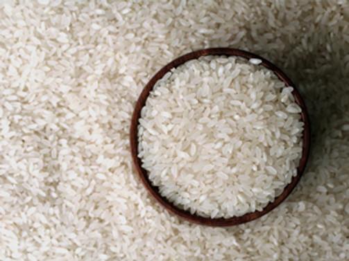 Balkanlar Türk pirinci yetiştirecek