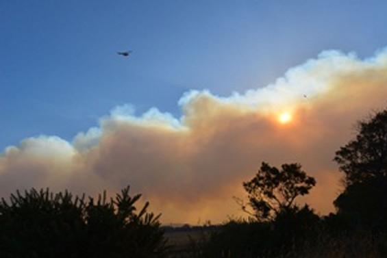 ABD'deki yangın evleri tehdit ediyor