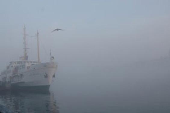 Yoğun sis ulaşımı felç etti