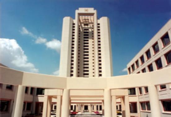 Merkezi Yönetim brüt borç stoku 462,9 milyar lira