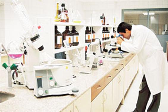 Kök hücre araştırmalarına destek yasağı askıya alındı