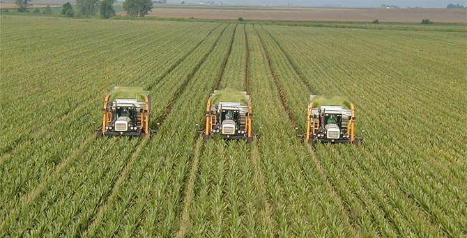 Tarımsal veriler tek merkezde toplanıyor