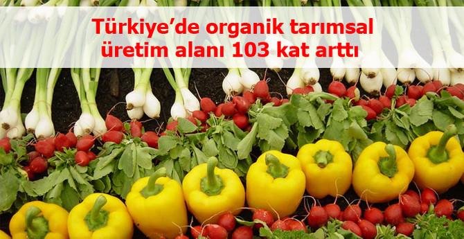 Organik tarımsal üretim alanı 103 kat arttı