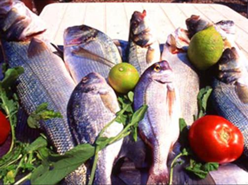 Çin'e daha fazla balık ihraç edilecek