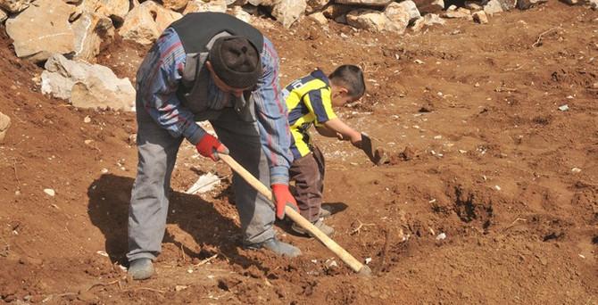 Çözüm süreci, toprağın bereketini artırdı