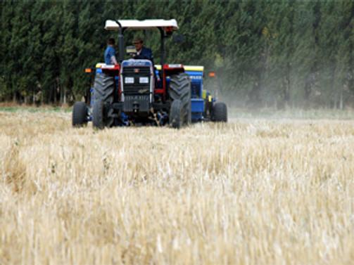 Hasatta yeterli ürünü bulamayan çiftçi sıkıntı yaşayacak